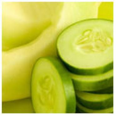 Cucumber Melon Dark Balsamic Vinegar, 1G Jug