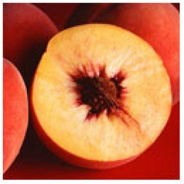 White Peach Balsamic Vinegar, WITH LABELS Case of 12 375mL Bottles