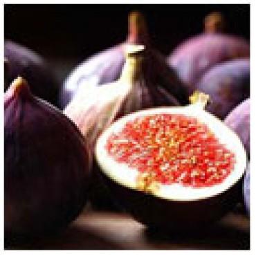 Fig Dark Balsamic Vinegar, 1 G Jug.